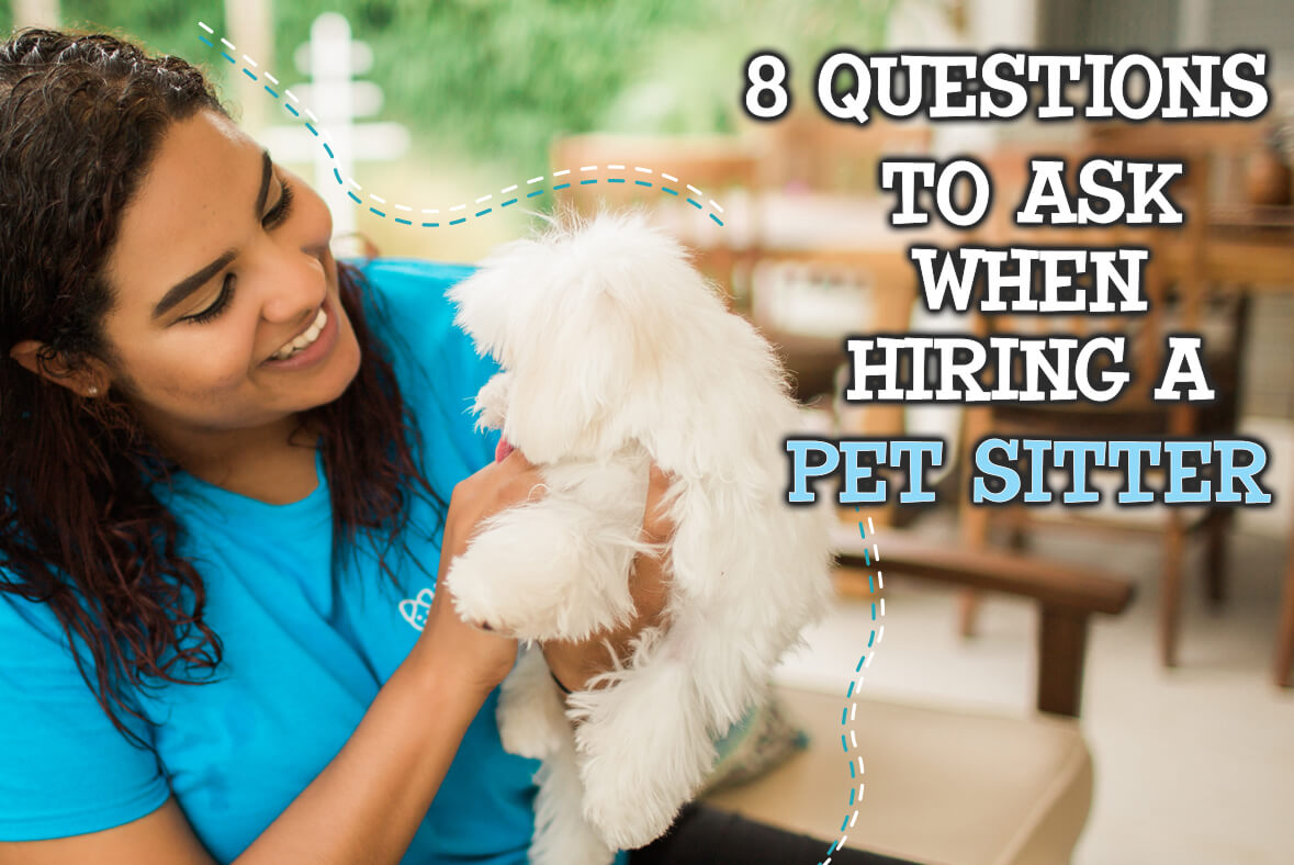 8 Questions To Ask When Hiring A Pet Sitter