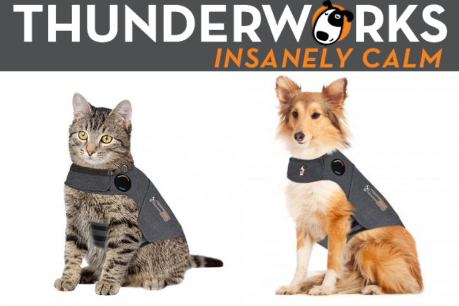 Decrease Pet Stress And Anxiety With A Thunder Shirt!