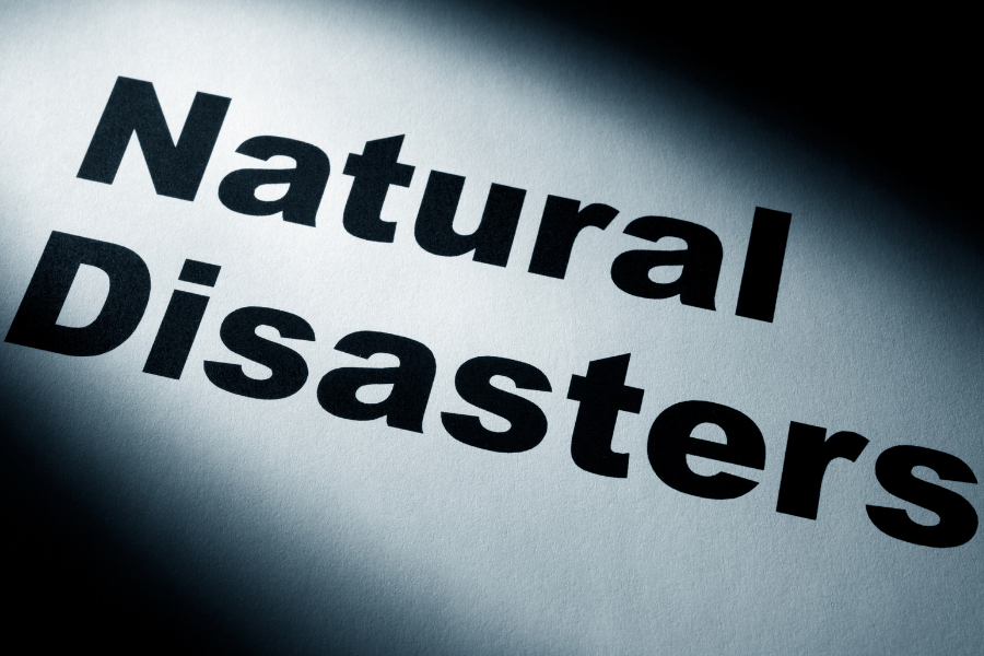 Top 5 Ways You And Your Pet Can Prepare For A Natural Disaster