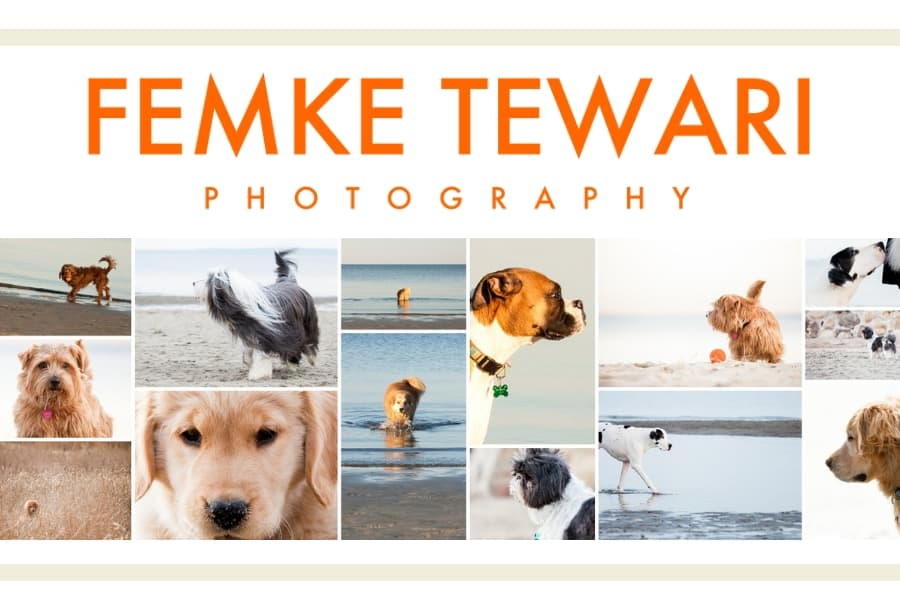 Pet Photography With Femke Tewari