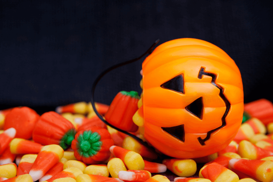 What Should I Do If My Pet Eats Halloween Candy?