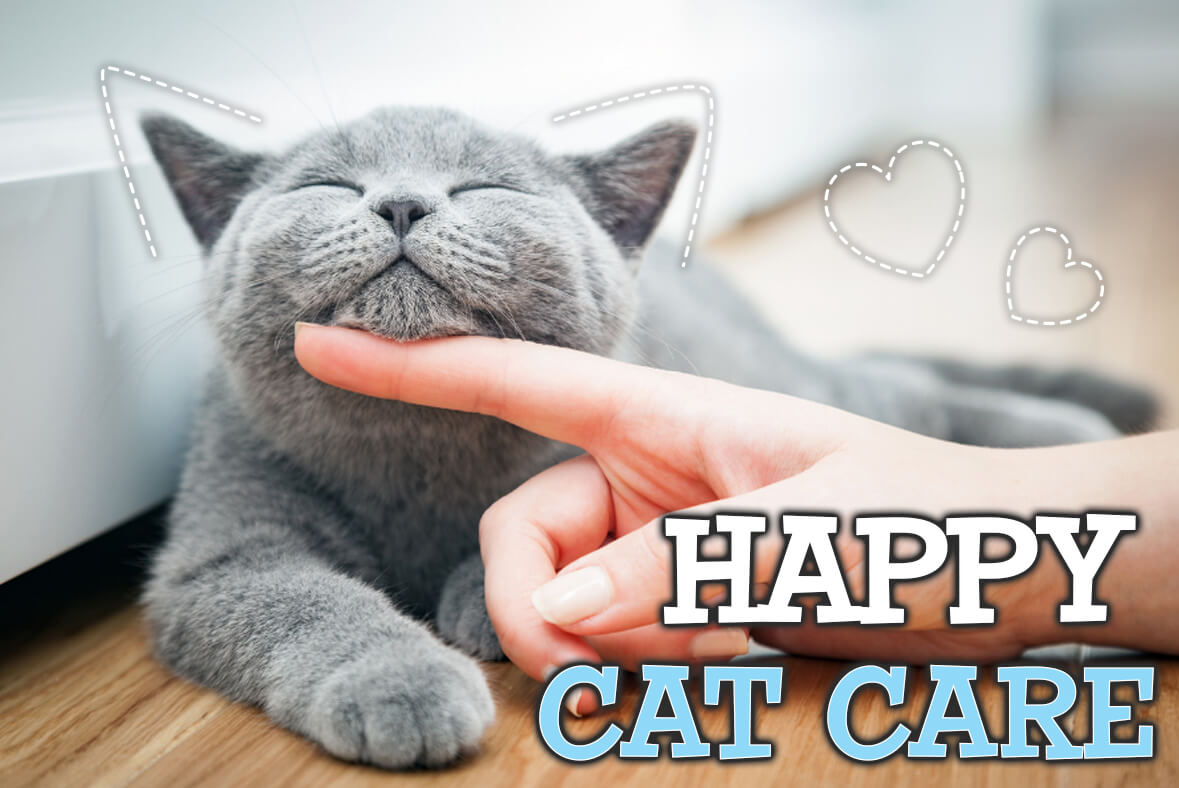 What is Happy Cat Care?