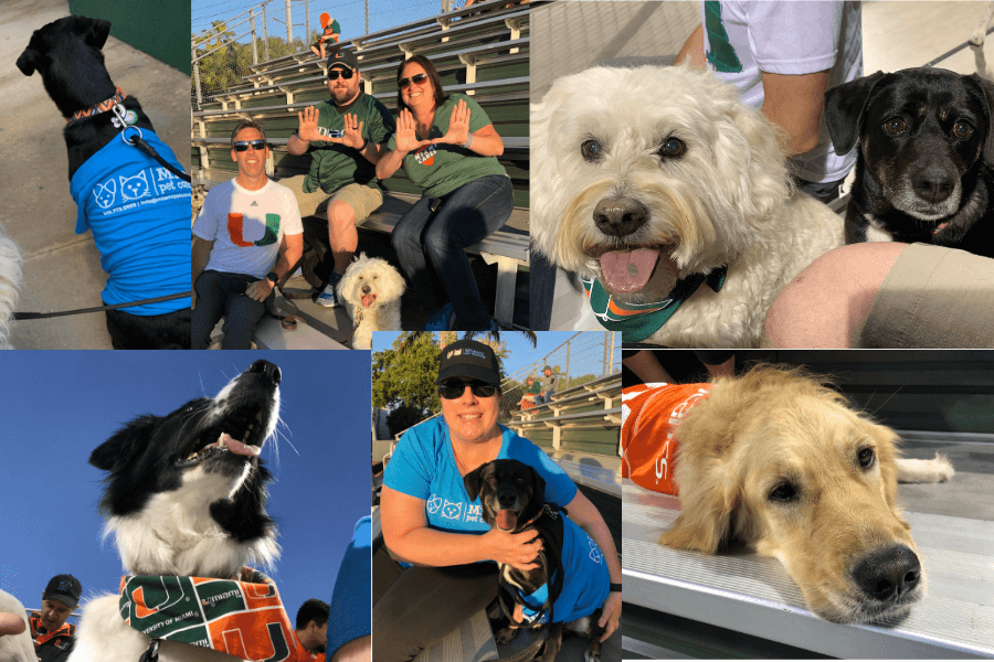 """Bark In The Park"" At The University of Miami"