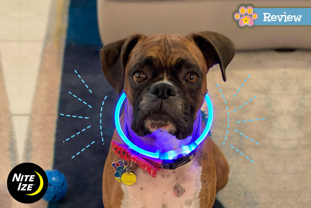 Review of Nite Ize – NiteHowl LED Safety Necklace