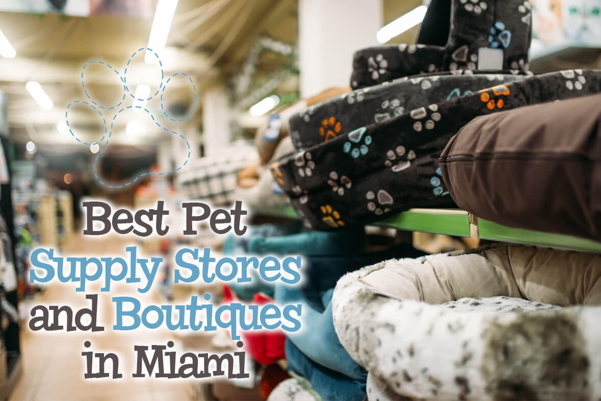 Best Pet Supply Stores In Miami