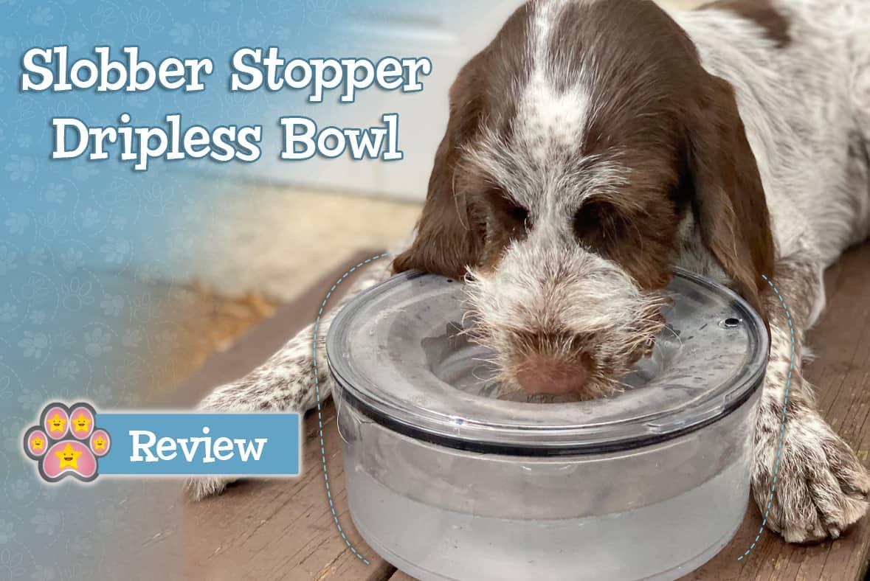 Slobber Stopper Review